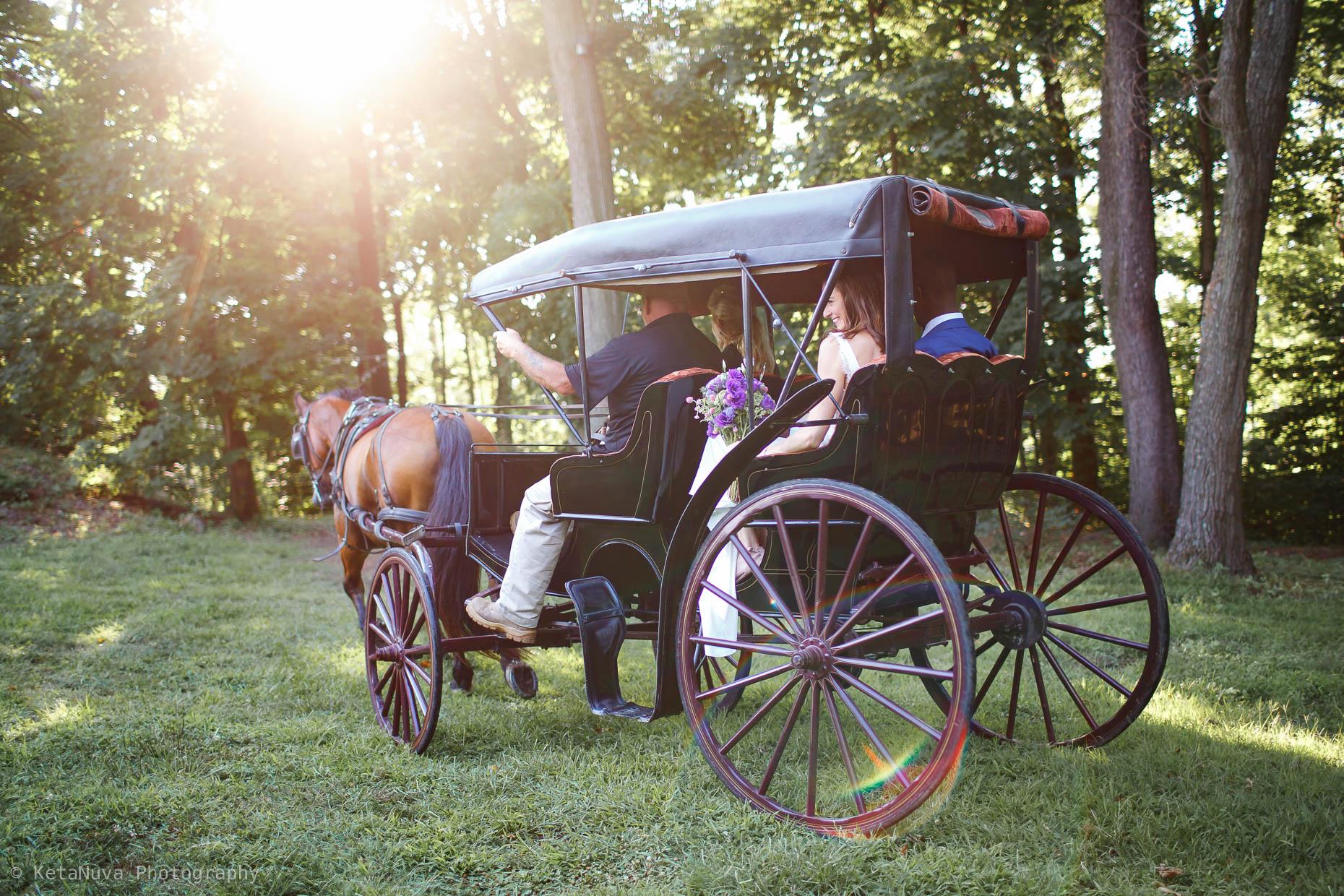 Sunken Garden - Lauxmont Farms Wedding | Aubrey & Barrett Lauxmont Farms Wedding Sunken Garden36